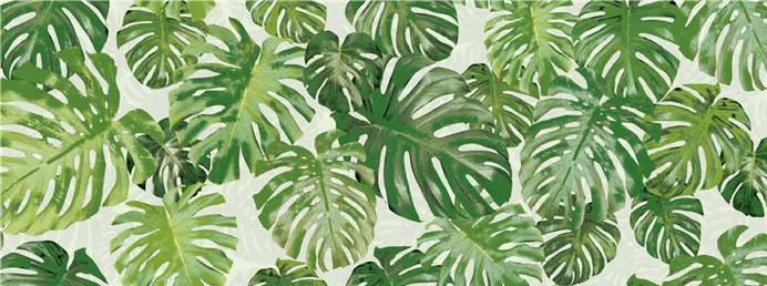 Jungle 32-p2